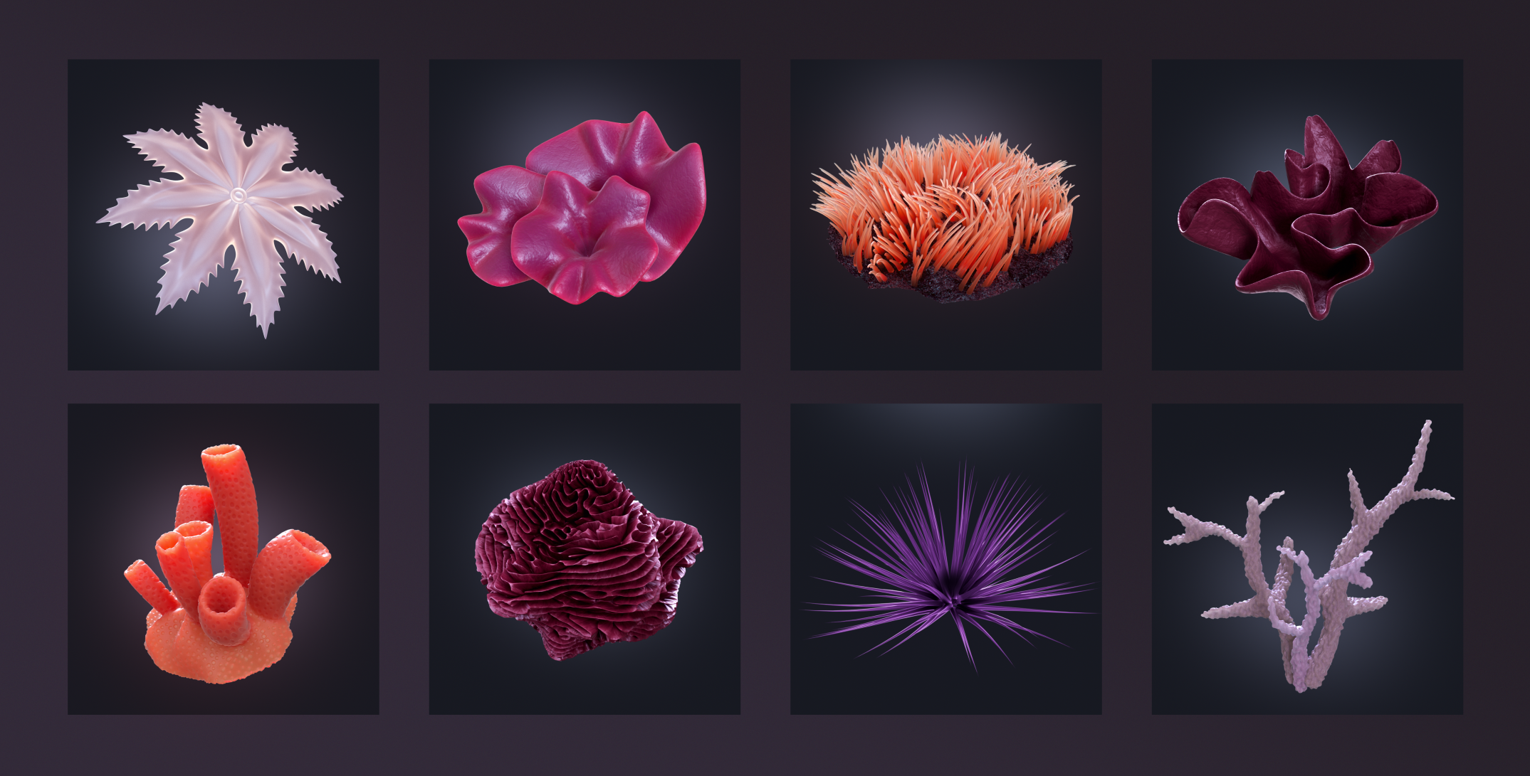 coral-elements-comp3