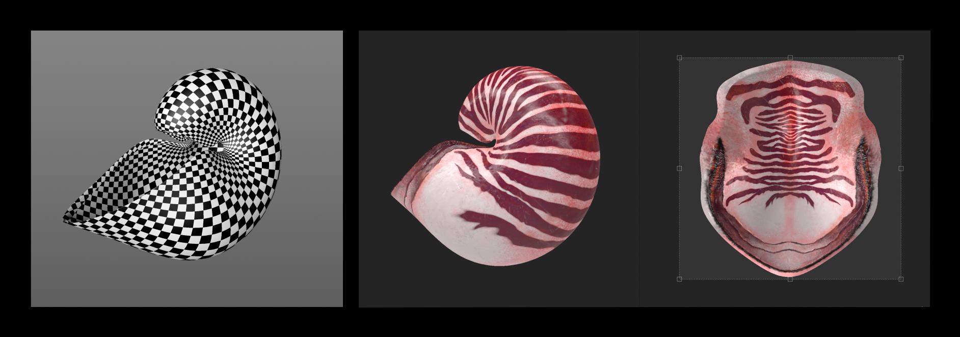 shellprocess
